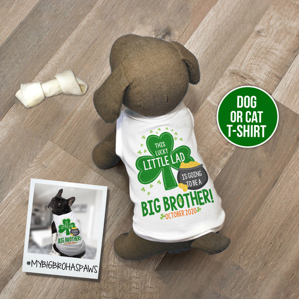 St. Patrick's Day dog shirt big brother to be little shamrock pregnancy announcement dog Tshirt