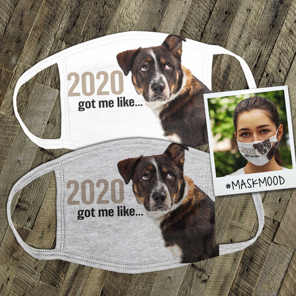 Funny dog 2020 got me like face mask