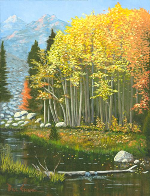 Fall Colors at Rock Creek