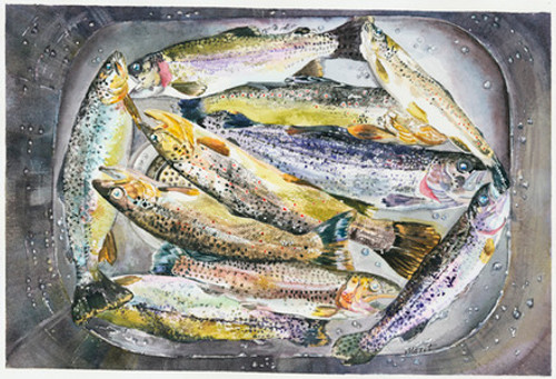 Sink Full of Trout