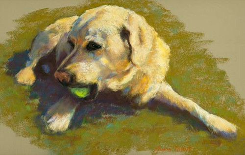Yellow Lab with Ball