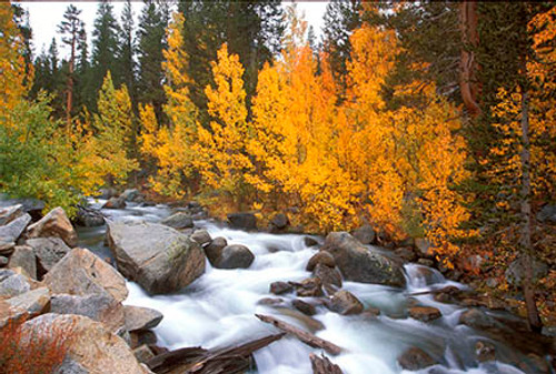 Bishop Creek Fall