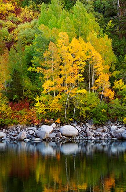 Lake Sabrina Falls