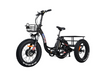 Addmotor   Motan M-330   Electric Trike