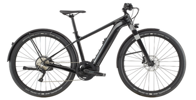 Cannondale Electric: Canvas Neo 1 - 2021