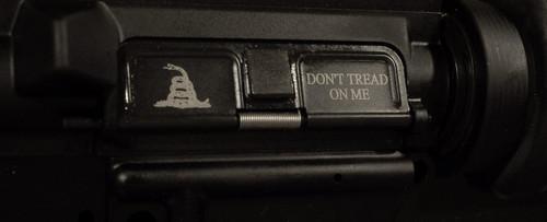 AR15 Dust Cover - Gadsden