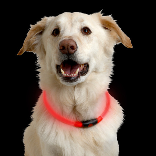 NiteHowl® LED Safety Necklace - Red