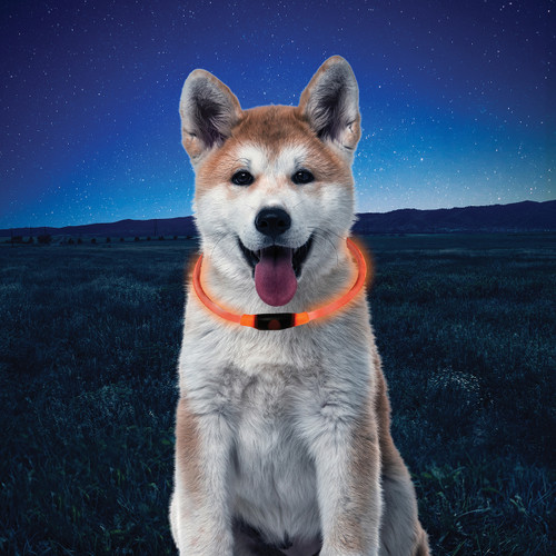 NiteHowl® LED Safety Necklace - Orange