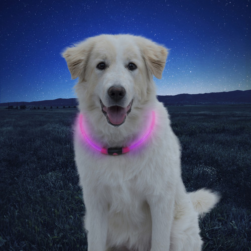 NiteHowl® LED Safety Necklace - Pink