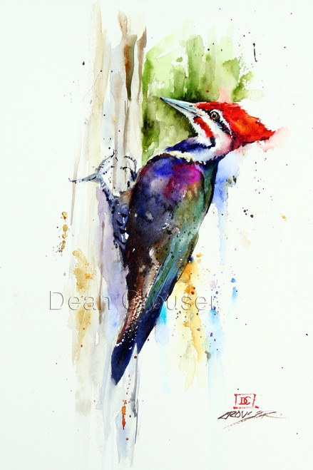 PILEATED WOODPECKER signed and numbered bird print.
