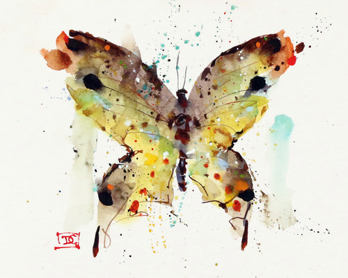 """TYE DYE BUTTERFLY"" nature art from an original watercolor painting by Dean Crouser. Available in a variety of products including signed and numbered limited edition prints, ceramic tiles, greeting cards and more!"
