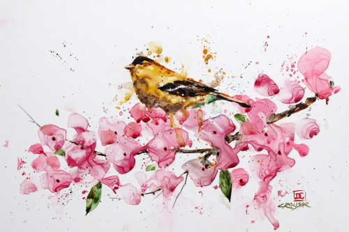 """GOLDFINCH & CHERRY BLOSSOMS"" bird and flower art from an original painting by Dean Crouser.  This image is available as limited edition prints, ceramic tiles and coasters, greeting cards and more. Thanks for looking!"