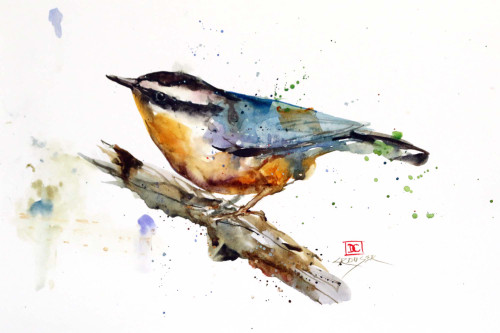 """""""NUTHATCH, Sketch' original watercolor bird painting by Dean Crouser. This original painting measures approximately 14"""" wide by 11"""" tall. Artist retains any and all rights to future use of this image. Copyright Dean Crouser."""