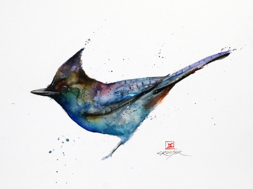 """""""STELLERS JAY"""" original watercolor bird painting by Dean Crouser. This original watercolor painting measures approximately 15"""" wide by 11"""" tall. Professionally packaged for safe shipping. Here's a great opportunity to own a DC original! Artist retains any and all rights to future use of this image. Thanks for looking!"""