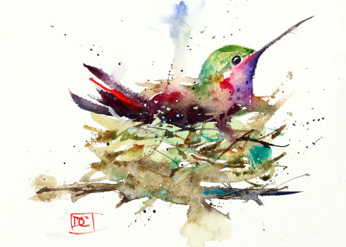 """HUMMINGBIRD in NEST"" 5 x 7"" hummingbird greeting cards. Blank inside, white envelope included. Individually packaged in protective clear flap-sealed bag. Quantity discounts."