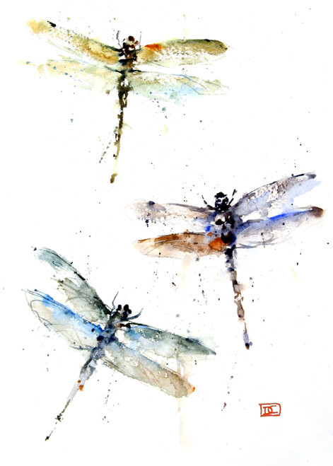 """""""DRAGONFLIES"""" 5 x 7"""" greeting cards. Blank inside, white envelope included. Individually packaged in protective clear flap-sealed bag. Quantity discounts."""