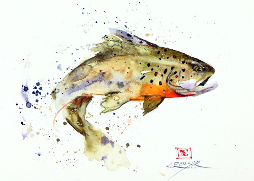 """JUMPING TROUT"" 5 x 7"" fish greeting cards. Blank inside, white envelope included. Individually packaged in protective clear flap-sealed bag. Quantity discounts."