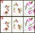 """Mixed set of 6 of Dean's best-selling 5 x 7"""" hummingbird cards. You will receive (2) each of Pee Wee (left row), Meeting Place (middle), and Hummingbird Floral (right). Each 5 x 7"""" card is blank inside, white envelope included and individually sealed in clear seal bag. Buy additional sets and save!"""