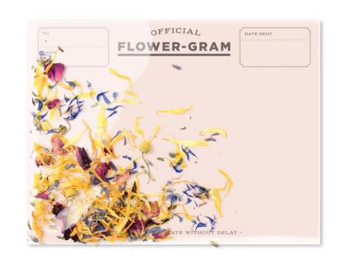 CARD, Flower-gram - Wildflowers and Mint, Inklings - 1 card