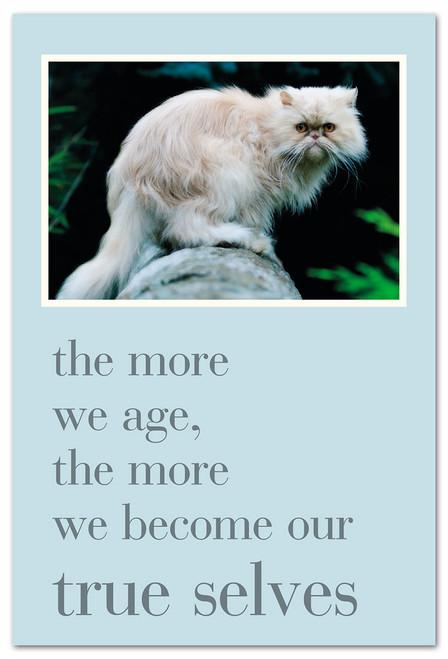 CARD Happy Birthday grumpy cat  Cardthartic