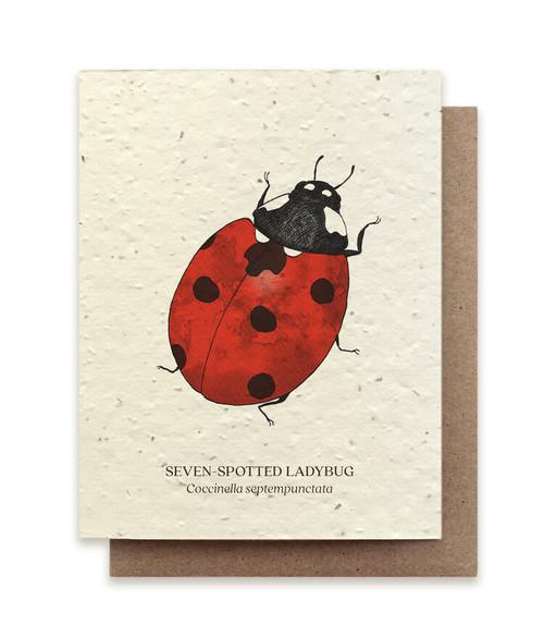 Card, plantable paper, ladybug,  The Bower Studio