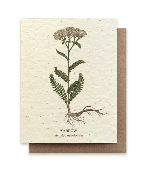 Card, plantable paper,  Yarrow,  The Bower Studio