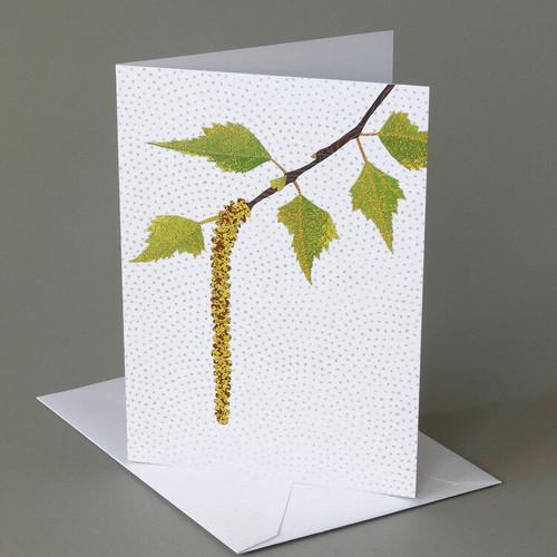 CARD  birch catkin   Carve Designs