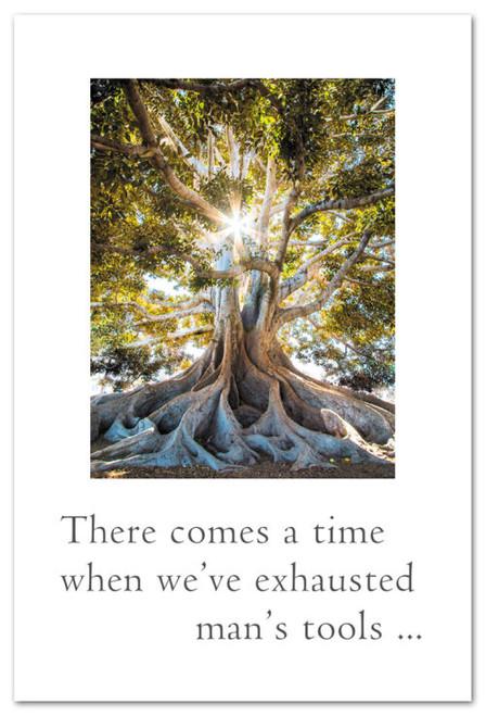 Card Sun through Banyan Tree  Support & Encouragement  Cardthartic