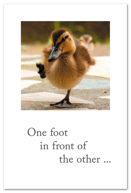 CARD, Encouragement, Duckling Steps, Cardthartic