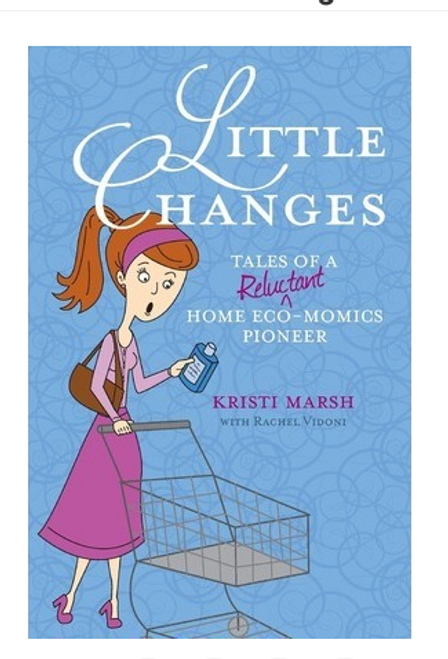 BOOK, LITTLE CHANGES - 193 Pages