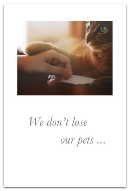We don't lose our pets...