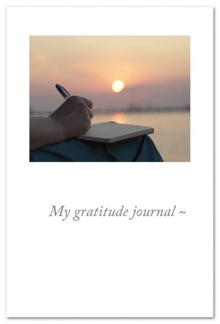 My gratitude journal~