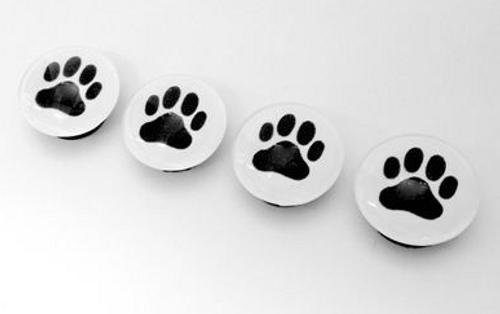 MAGNETS, Dog Paw Prints - Set of 4
