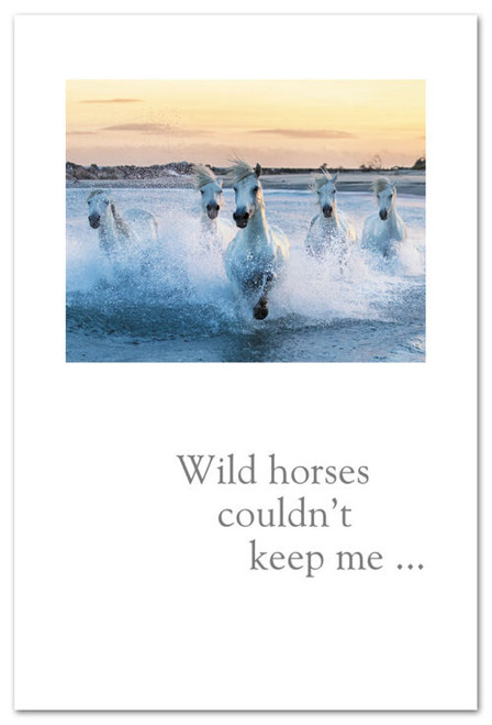 Wild horses couldn't keep me...