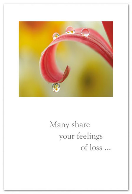 Many share your feelings of loss...