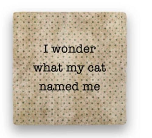 """CAT NAMED ME COASTER, """"I wonder..."""""""