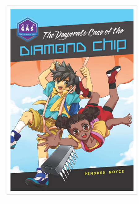 BOOK & KIT, THE DESPERATE CASE OF THE DIAMOND CHIP, Tumblehome Learning - 131 Pages