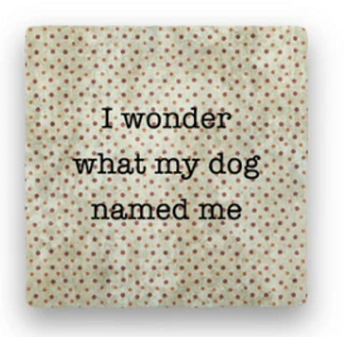 DOG NAMED ME COASTER - I wonder...
