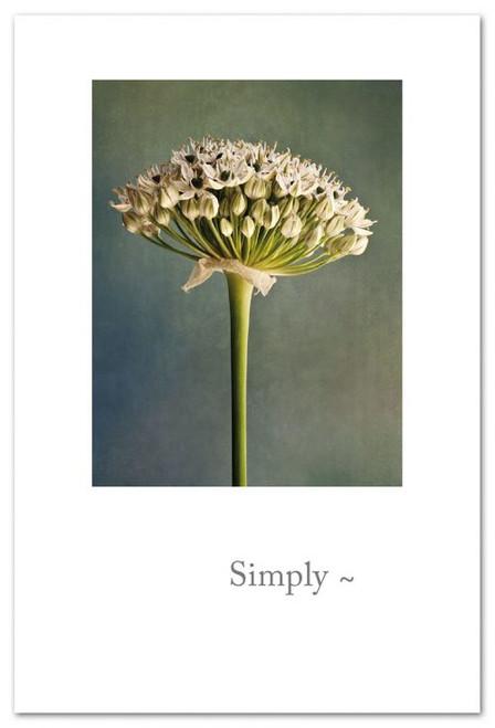 Simply~