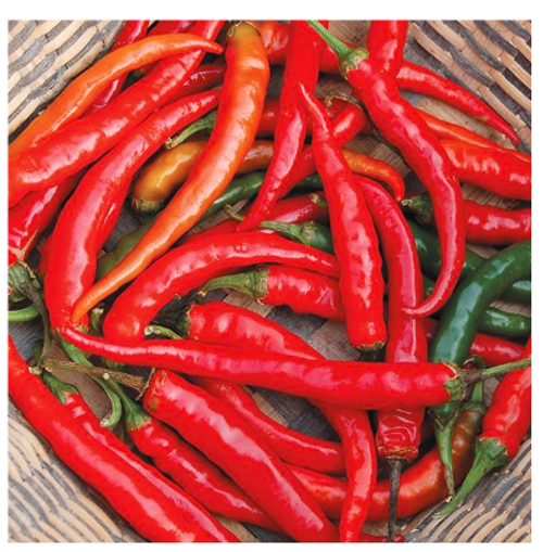 2020 SEEDS, PEPPERS, RING-O-FIRE CAYENNE HOT PEPPER