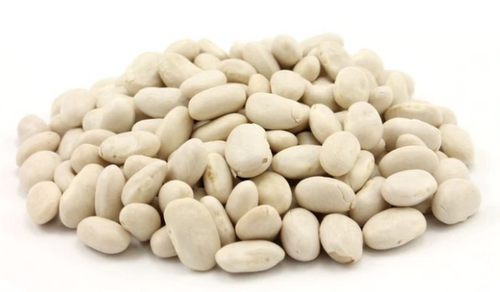BEANS, GREAT NORTHERN, Organic, 1 lb (similar to Cannellini)