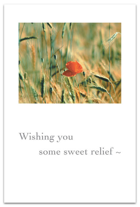 Wishing you some sweet relief~