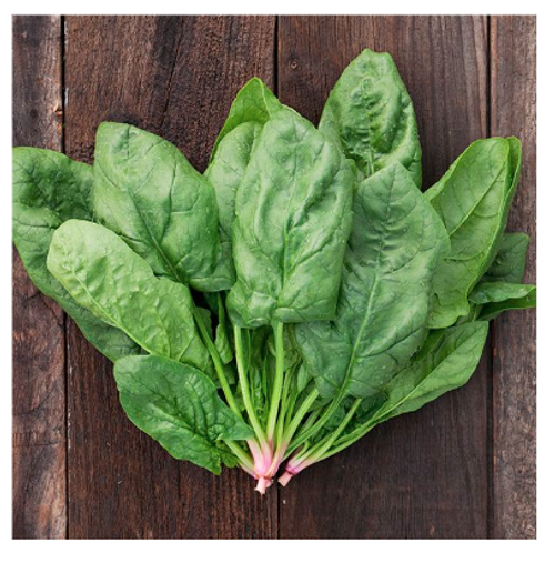 2021 SEEDS, SPINACH, RENEGADE SPINACH
