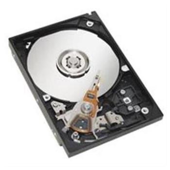 00Y4602 IBM 600GB 10000RPM FC SAS E-DDM 3.5-inch Internal Hard Drive for DS5020