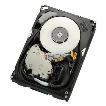 9OJ065-051 Seagate 300GB 10000RPM SAS 3Gbps 16MB Cache 3.5-inch Internal Hard Drive