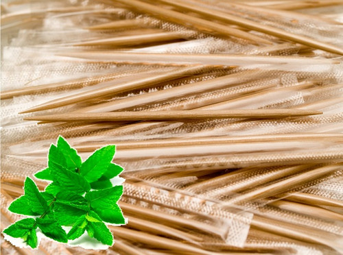 TMT12 Cellophane Wrapped Mint-Flavored Wood Toothpick (12/1M)