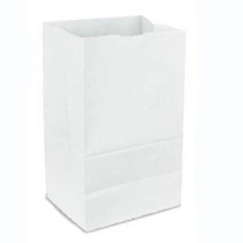 6lb White Paper Bag (500/pk)