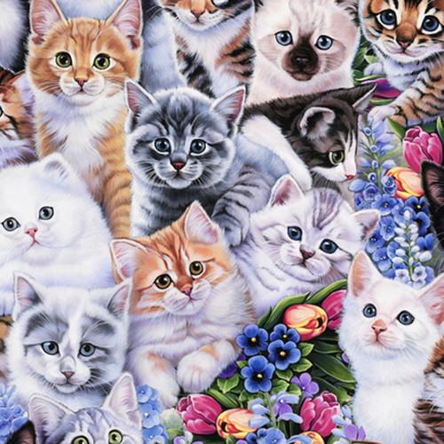 """Animal Love - Kitties - 100% Cotton - 44/45"""""""