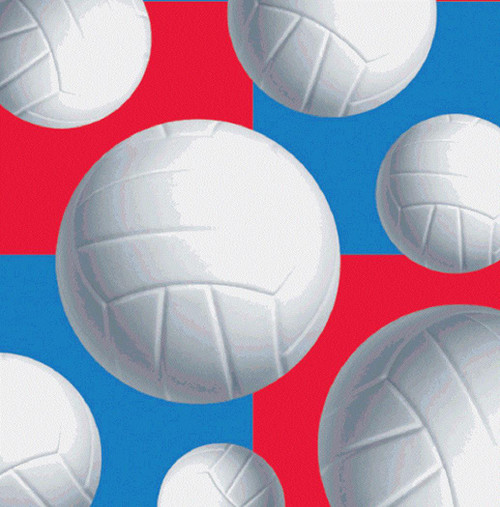 Party Supplies Sports Volleyball Parties Plus