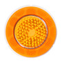 Sonic Exfoliator Brush Head